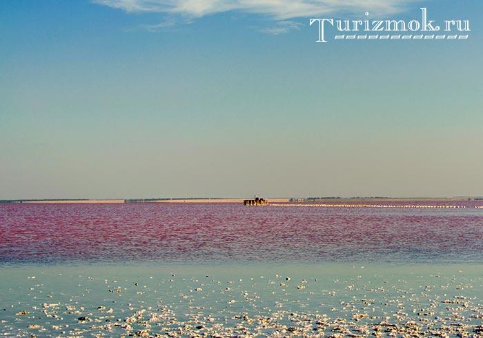 Сасык-Сиваш - розовое озеро Крым