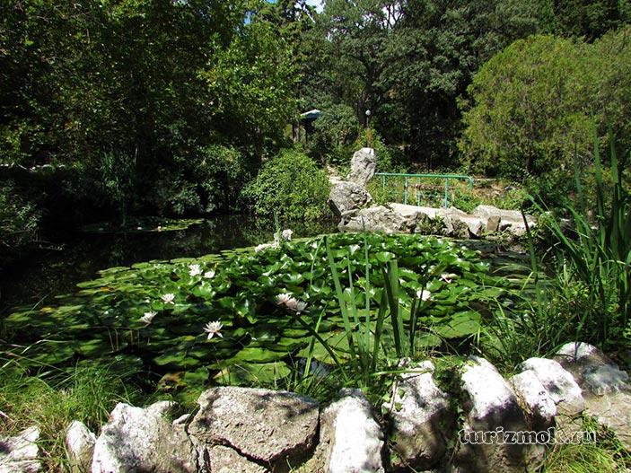 Форосский парк фото